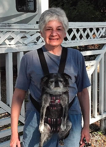 Pooch Pack Front Carrier for Small Dogs by Daba Doo from Golly Gear