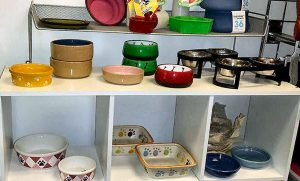 dog bowl selection at Golly Gear