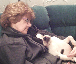 Dealing with pandemic: Woman napping holding a Boston Terrier