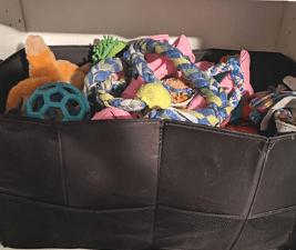 dog stuff - toys