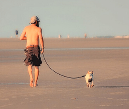 Picture of a man walking his dog on leash at a beach