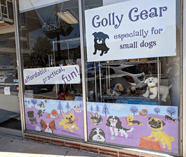Dogs hate change almost as much as we do. Golly Gear's bricks-and-mortar location, pictured, is gone.