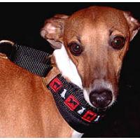 Hound-Collar