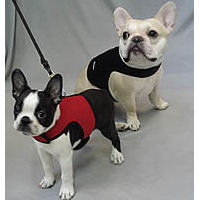 Wrap-N-Go-Harness-by-Bark-Appeal